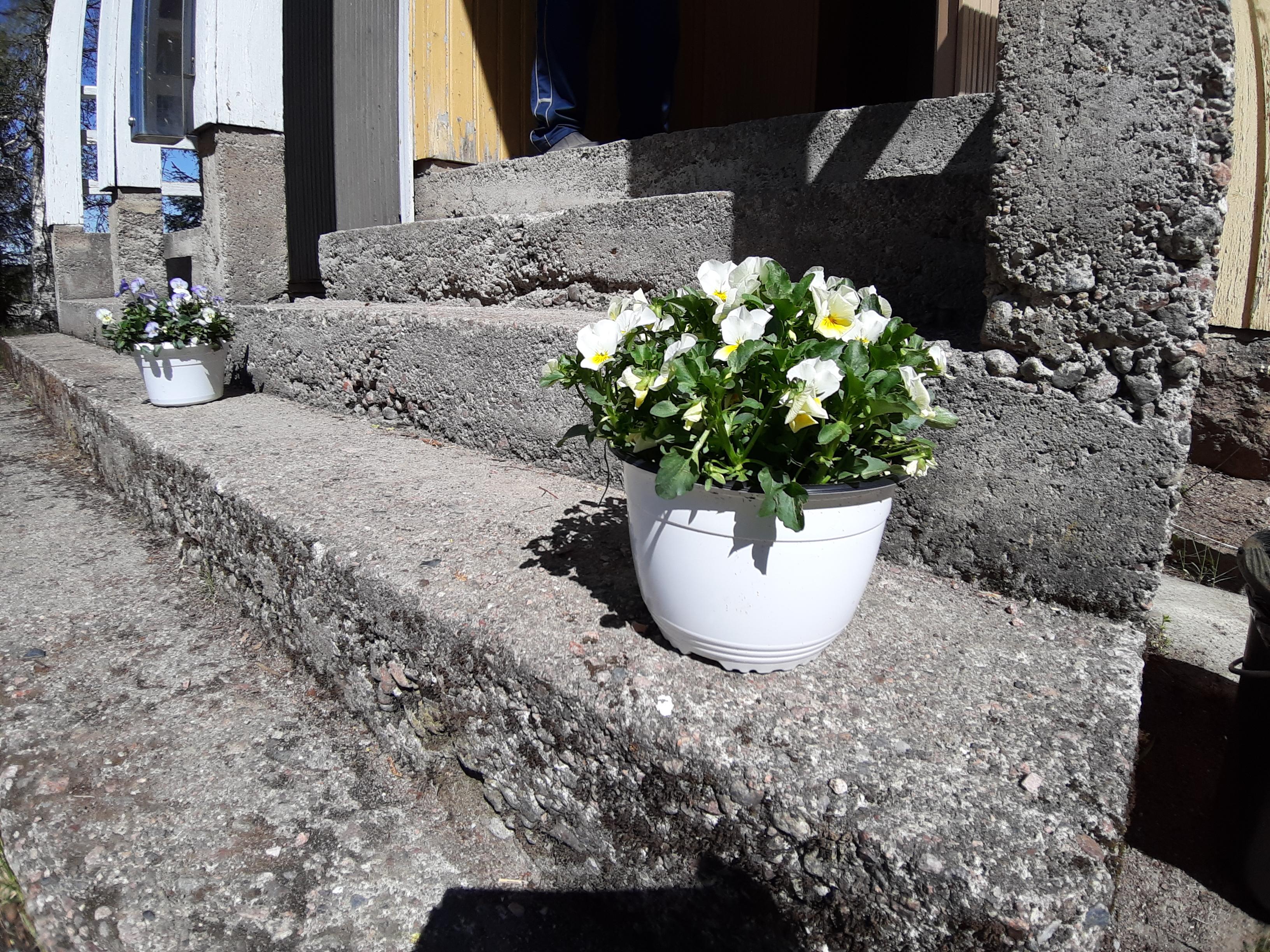 Kesä alkoi Routiolla ja Tavolan kesän avajaisilla